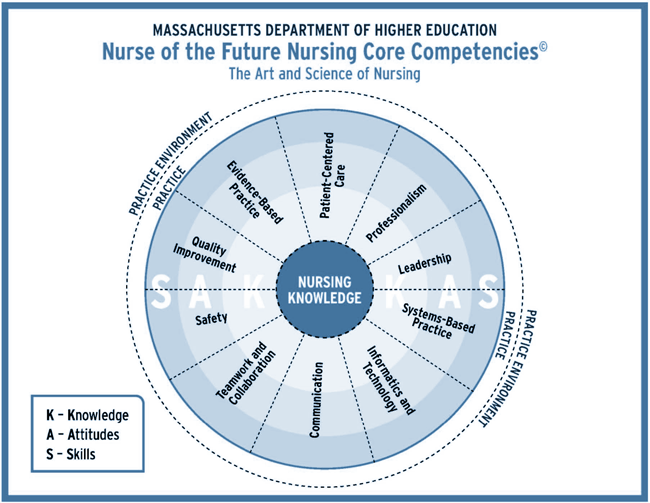 Nurse of the Future Core Competencies | Mass Dept of Higher Education